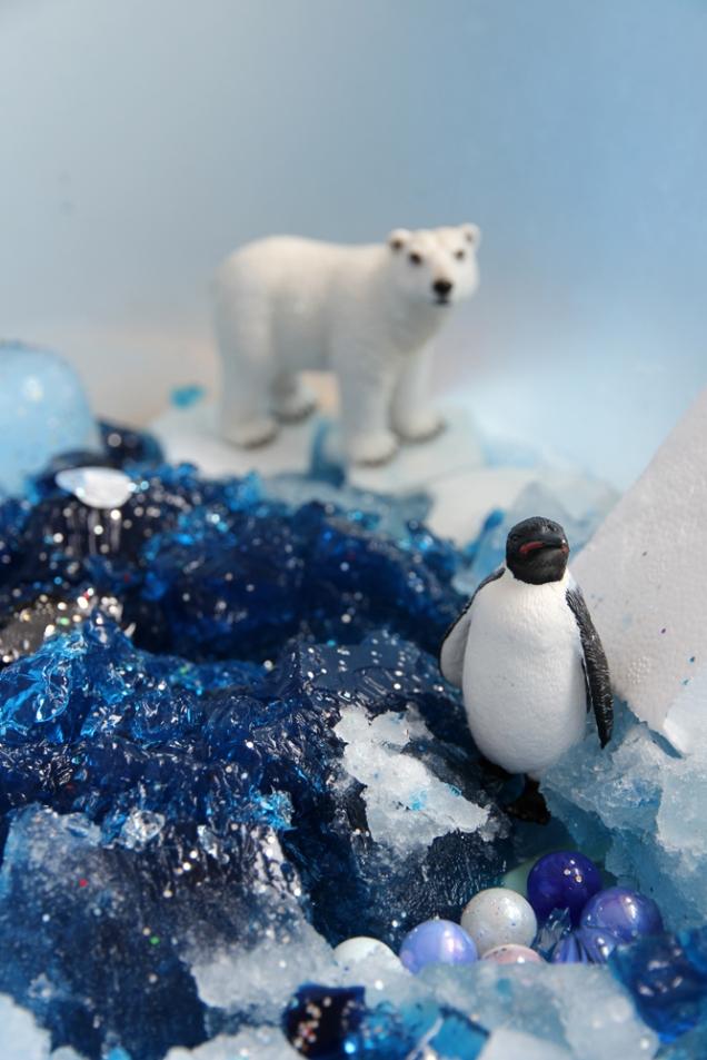 dzikajablon-antarktyda