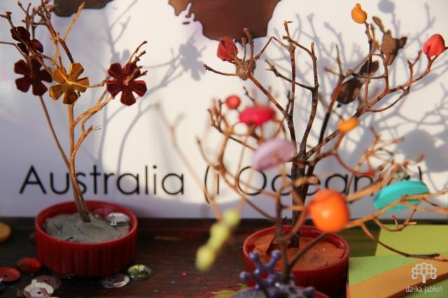 dzika-jablon-australia
