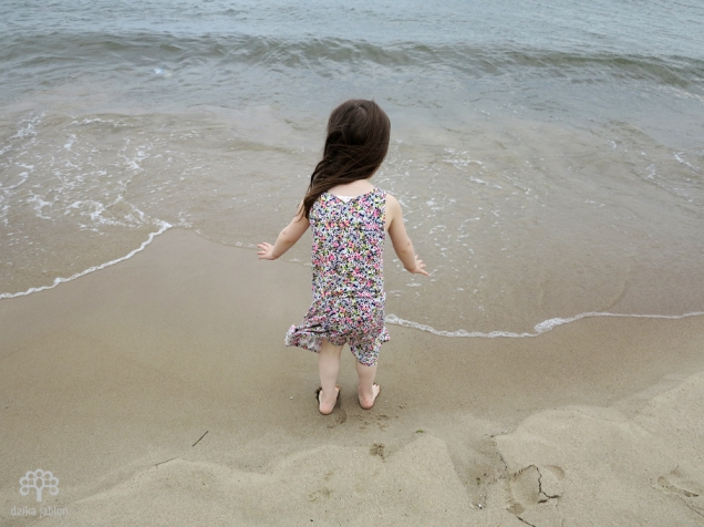 dzika-jablon-morze