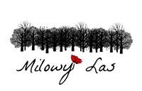 pk-milowy-las