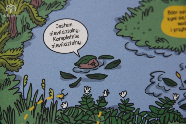 dzika-jablon811s